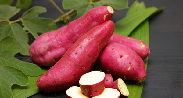15-reasons-why-sweet-potatoes-are-perfect-for-diabetics